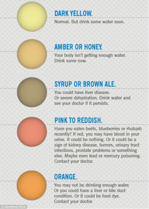 What causes orange skin color